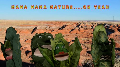 green-cabbage-puppets-sing-about-nature